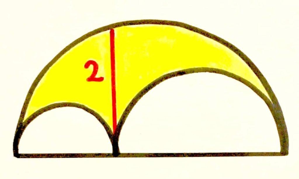yellow-arbelos